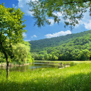CO2 reductie, duurzaam ondernemen, beleid