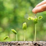 duurzaam ondernemen, certificeren, CO2 reductie